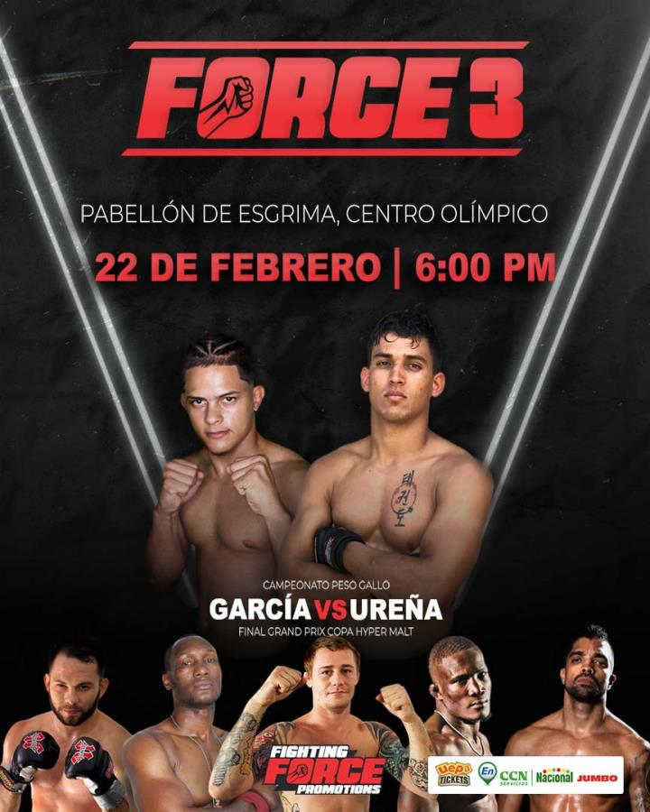 Fighting Force 3