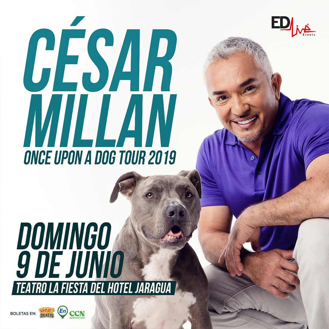 César Millán Live Show